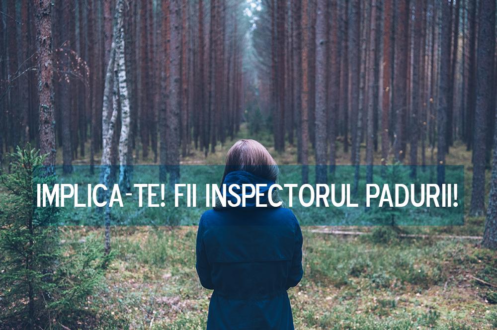 inspectorul-padurii decalex